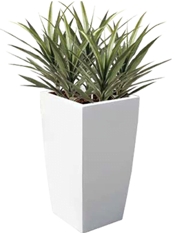 Greenville Planters - Outdoor Planters and Large Fibreglass Planters